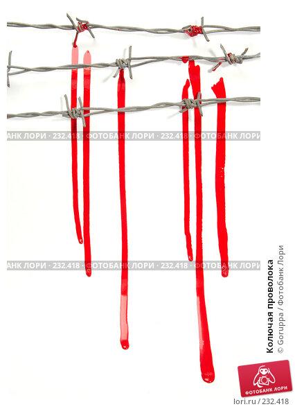 Купить «Колючая проволока», фото № 232418, снято 24 марта 2008 г. (c) Goruppa / Фотобанк Лори