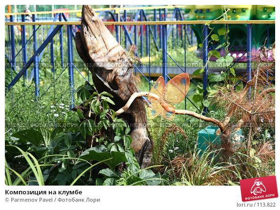 Композиция на клумбе, фото № 113822, снято 15 августа 2007 г. (c) Parmenov Pavel / Фотобанк Лори