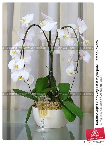 Композиция с орхидеей и фужером шампанского, фото № 290462, снято 18 мая 2008 г. (c) Максим Соколов / Фотобанк Лори