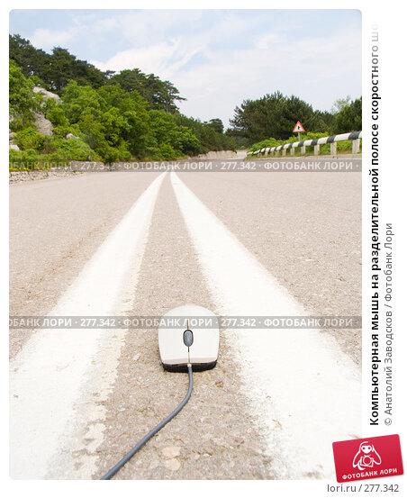 Купить «Компьютерная мышь на разделительной полосе скоростного шоссе», фото № 277342, снято 22 мая 2006 г. (c) Анатолий Заводсков / Фотобанк Лори