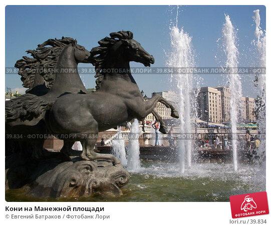 Кони на Манежной площади, фото № 39834, снято 4 августа 2003 г. (c) Евгений Батраков / Фотобанк Лори