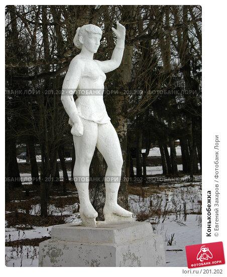 Конькобежка, фото № 201202, снято 13 февраля 2008 г. (c) Евгений Захаров / Фотобанк Лори
