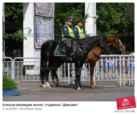 """Конная милиция около  стадиона """"Динамо"""", эксклюзивное фото № 334246, снято 25 июня 2008 г. (c) lana1501 / Фотобанк Лори"""