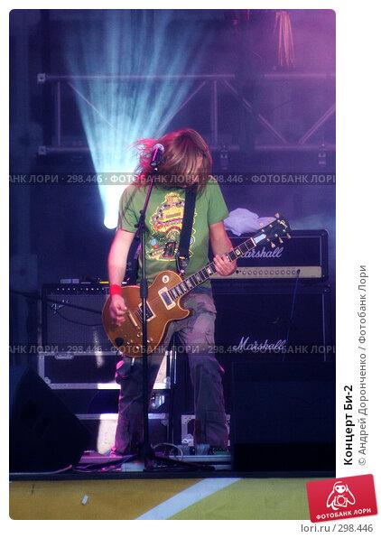 Концерт Би-2, фото № 298446, снято 22 мая 2017 г. (c) Андрей Доронченко / Фотобанк Лори