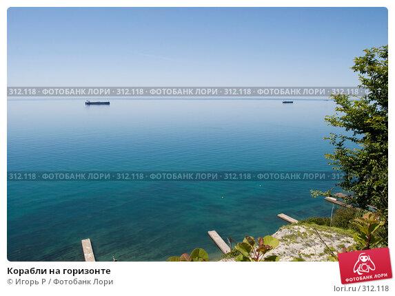Корабли на горизонте, фото № 312118, снято 5 июня 2008 г. (c) Игорь Р / Фотобанк Лори