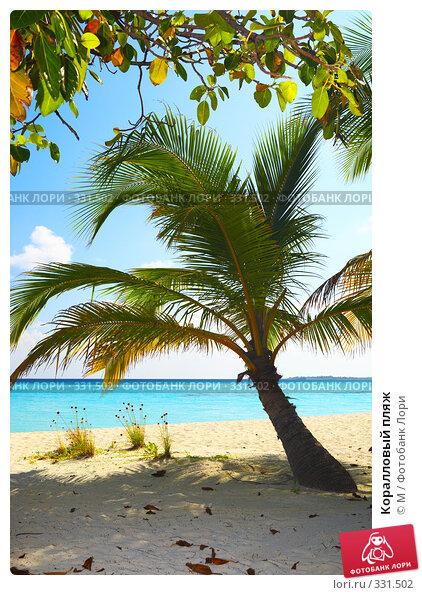 Коралловый пляж, фото № 331502, снято 27 июня 2017 г. (c) Михаил / Фотобанк Лори