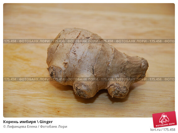 Корень имбиря \ Ginger, фото № 175458, снято 23 апреля 2017 г. (c) Лифанцева Елена / Фотобанк Лори