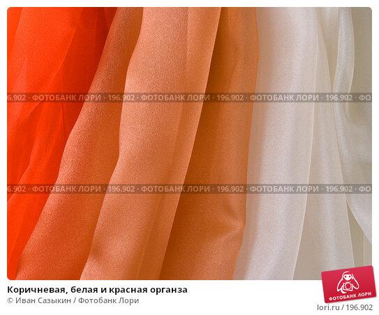 Коричневая, белая и красная органза, фото № 196902, снято 22 октября 2004 г. (c) Иван Сазыкин / Фотобанк Лори
