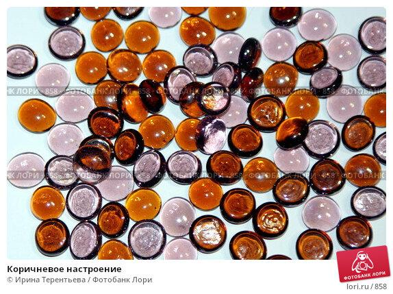 Купить «Коричневое настроение», эксклюзивное фото № 858, снято 28 февраля 2006 г. (c) Ирина Терентьева / Фотобанк Лори