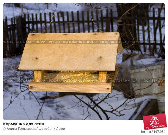 Кормушка для птиц, эксклюзивное фото № 197034, снято 6 января 2008 г. (c) Алина Голышева / Фотобанк Лори