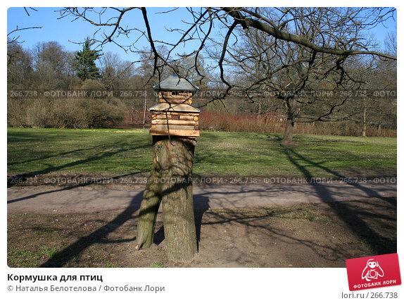 Купить «Кормушка для птиц», фото № 266738, снято 26 апреля 2008 г. (c) Наталья Белотелова / Фотобанк Лори