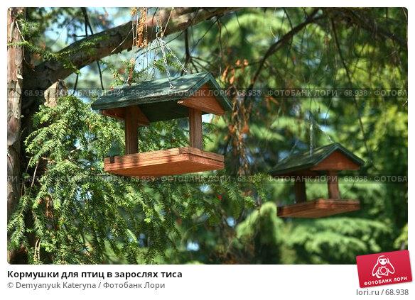 Купить «Кормушки для птиц в зарослях тиса», фото № 68938, снято 5 августа 2007 г. (c) Demyanyuk Kateryna / Фотобанк Лори
