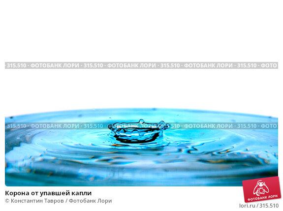 Корона от упавшей капли, фото № 315510, снято 5 апреля 2008 г. (c) Константин Тавров / Фотобанк Лори