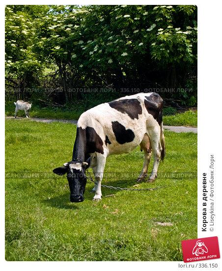 Корова в деревне, фото № 336150, снято 9 июня 2008 г. (c) Liseykina / Фотобанк Лори
