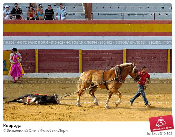 Коррида, эксклюзивное фото № 310802, снято 13 августа 2006 г. (c) Знаменский Олег / Фотобанк Лори