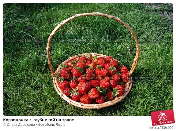 Корзиночка с клубникой на траве, фото № 339090, снято 8 июля 2005 г. (c) Ольга Дроздова / Фотобанк Лори