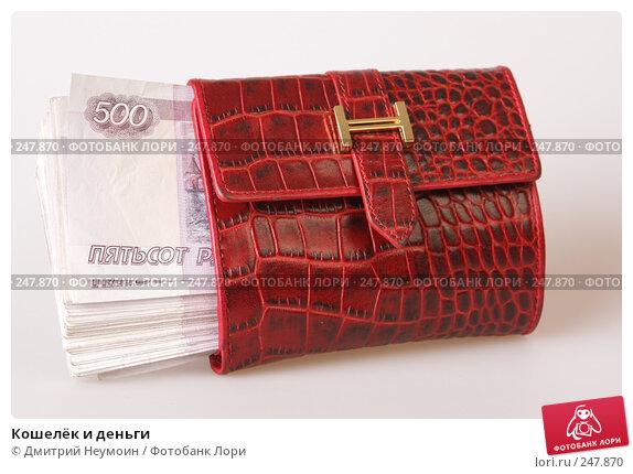 Купить «Кошелёк и деньги», эксклюзивное фото № 247870, снято 8 апреля 2008 г. (c) Дмитрий Нейман / Фотобанк Лори