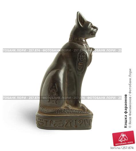 Купить «Кошка фараонов», фото № 257874, снято 12 апреля 2008 г. (c) Яков Филимонов / Фотобанк Лори