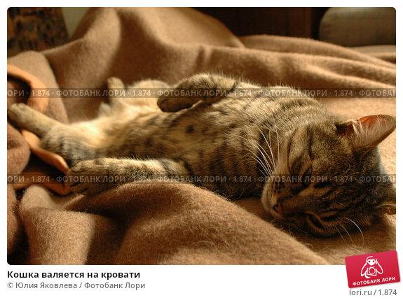 Кошка валяется на кровати, фото № 1874, снято 21 марта 2006 г. (c) Юлия Яковлева / Фотобанк Лори