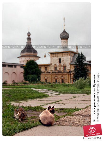 Купить «Кошки в ростовском Кремле», фото № 40754, снято 10 августа 2006 г. (c) Vladimir Fedoroff / Фотобанк Лори