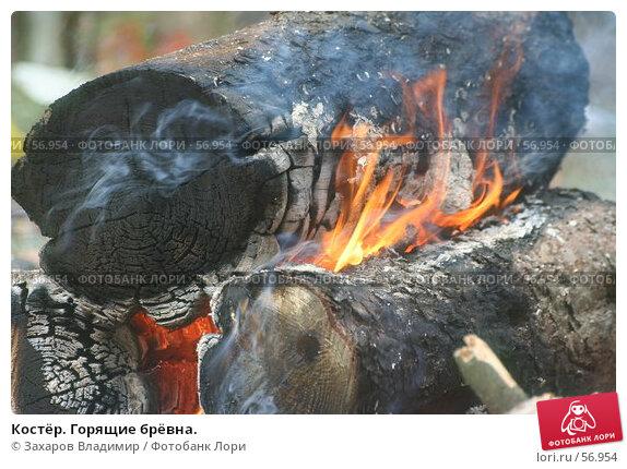 Костёр. Горящие брёвна., фото № 56954, снято 1 июля 2007 г. (c) Захаров Владимир / Фотобанк Лори
