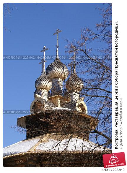 Кострома. Реставрация церкви Собора Пресвятой Богородицы., фото № 222942, снято 24 февраля 2008 г. (c) Julia Nelson / Фотобанк Лори