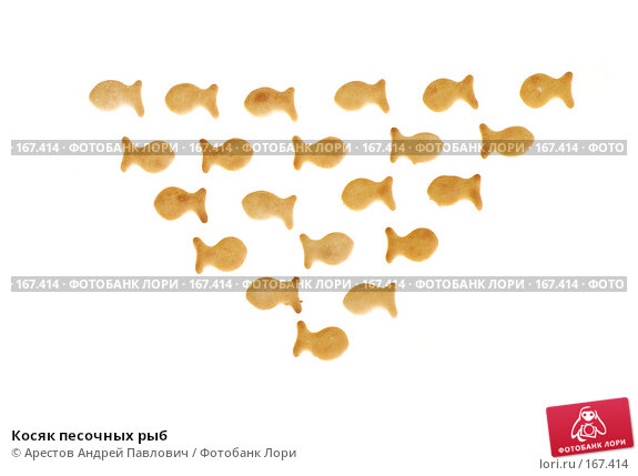 Косяк песочных рыб, фото № 167414, снято 30 марта 2017 г. (c) Арестов Андрей Павлович / Фотобанк Лори
