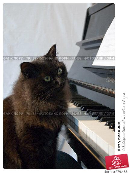 Кот у пианино, фото № 79438, снято 18 июня 2007 г. (c) Зайцева Ольга / Фотобанк Лори