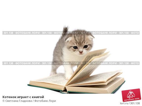 Котенок играет с книгой, фото № 301138, снято 12 апреля 2008 г. (c) Cветлана Гладкова / Фотобанк Лори