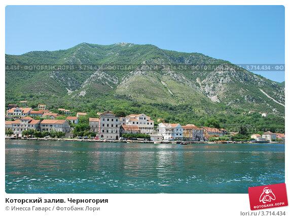 Отдохнуть в черногории в августе
