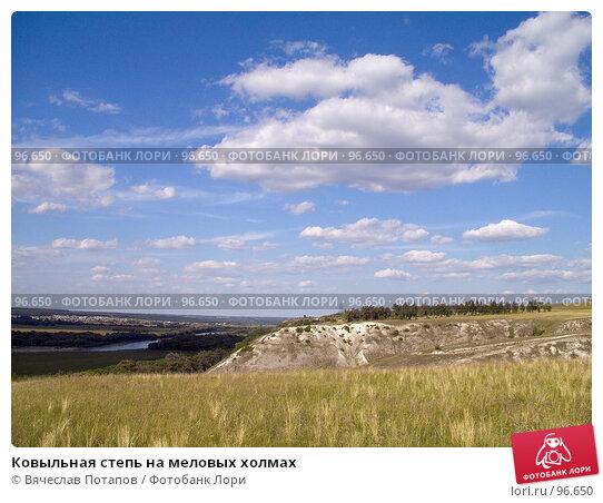 Ковыльная степь на меловых холмах, фото № 96650, снято 18 июля 2007 г. (c) Вячеслав Потапов / Фотобанк Лори
