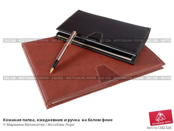 Кожаная папка, ежедневник и ручка  на белом фоне, фото № 242526, снято 26 октября 2016 г. (c) Марианна Меликсетян / Фотобанк Лори