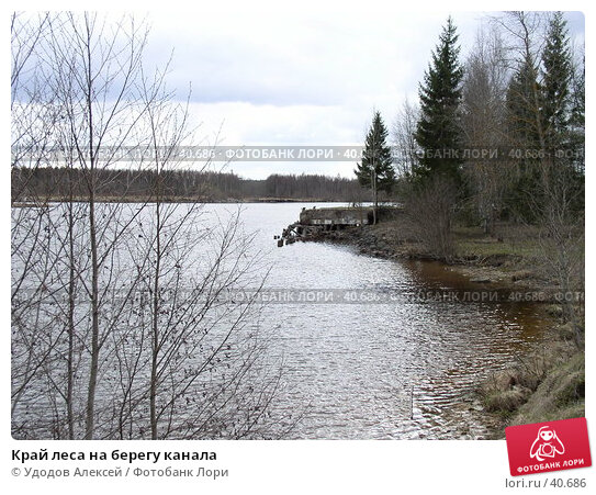 Край леса на берегу канала, фото № 40686, снято 30 апреля 2007 г. (c) Удодов Алексей / Фотобанк Лори