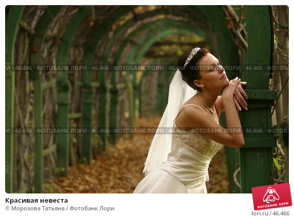 Красивая невеста, фото № 46466, снято 30 сентября 2006 г. (c) Морозова Татьяна / Фотобанк Лори
