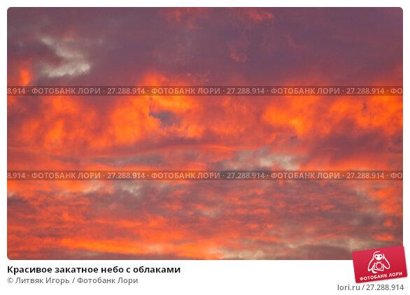 Купить «Красивое закатное небо с облаками», фото № 27288914, снято 26 апреля 2014 г. (c) Литвяк Игорь / Фотобанк Лори
