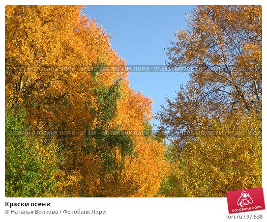 Краски осени, эксклюзивное фото № 97538, снято 30 сентября 2007 г. (c) Наталья Волкова / Фотобанк Лори