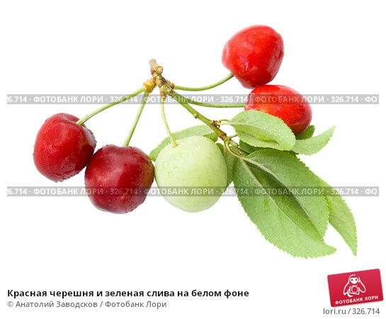 Красная черешня и зеленая слива на белом фоне, фото № 326714, снято 30 мая 2007 г. (c) Анатолий Заводсков / Фотобанк Лори