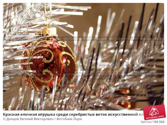 Красная елочная игрушка среди серебристых веток искусственной елки, фото № 166566, снято 5 января 2008 г. (c) Донцов Евгений Викторович / Фотобанк Лори