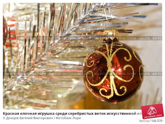 Красная елочная игрушка среди серебристых веток искусственной елки, фото № 166570, снято 5 января 2008 г. (c) Донцов Евгений Викторович / Фотобанк Лори