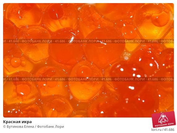 Красная икра, фото № 41686, снято 21 апреля 2007 г. (c) Бутинова Елена / Фотобанк Лори