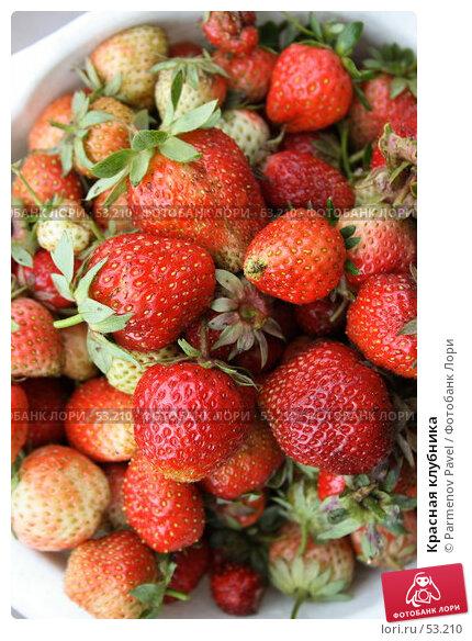 Красная клубника, фото № 53210, снято 16 июня 2007 г. (c) Parmenov Pavel / Фотобанк Лори