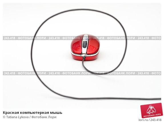 Красная компьютерная мышь, фото № 243418, снято 17 марта 2008 г. (c) Tatiana Lykova / Фотобанк Лори