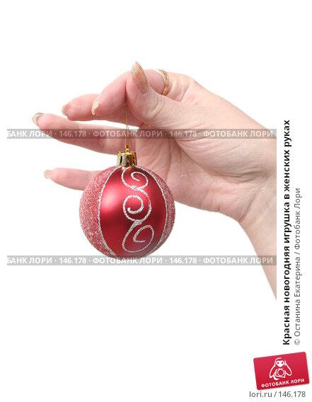 Красная новогодняя игрушка в женских руках, фото № 146178, снято 7 декабря 2007 г. (c) Останина Екатерина / Фотобанк Лори