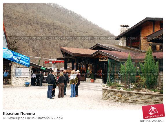 Красная Поляна, фото № 283650, снято 28 марта 2008 г. (c) Лифанцева Елена / Фотобанк Лори