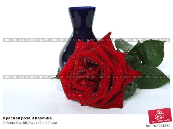 Красная роза и вазочка, фото № 204530, снято 23 декабря 2007 г. (c) Anna Kavchik / Фотобанк Лори