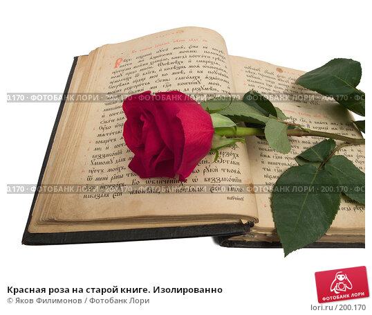 Красная роза на старой книге. Изолированно, фото № 200170, снято 8 февраля 2008 г. (c) Яков Филимонов / Фотобанк Лори