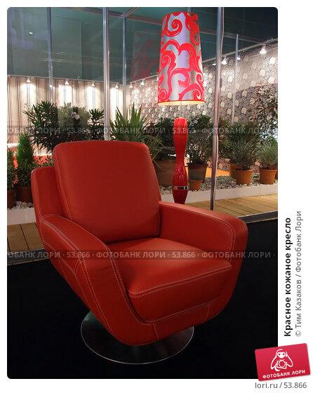 Красное кожаное кресло, фото № 53866, снято 19 мая 2007 г. (c) Тим Казаков / Фотобанк Лори
