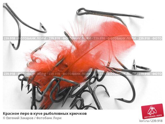 Красное перо в куче рыболовных крючков, фото № 239918, снято 2 марта 2008 г. (c) Евгений Захаров / Фотобанк Лори