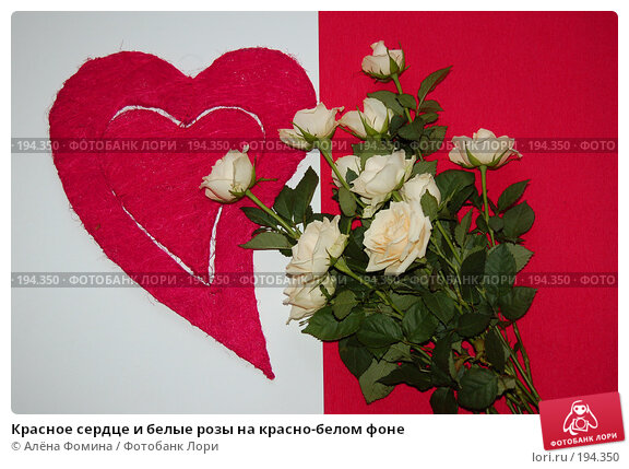 Красное сердце и белые розы на красно-белом фоне, фото № 194350, снято 4 февраля 2008 г. (c) Алёна Фомина / Фотобанк Лори
