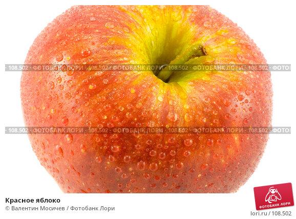 Красное яблоко, фото № 108502, снято 5 мая 2007 г. (c) Валентин Мосичев / Фотобанк Лори